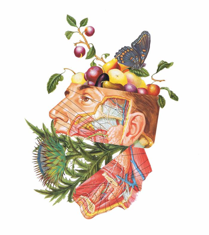 marie-conigilaro-fruity