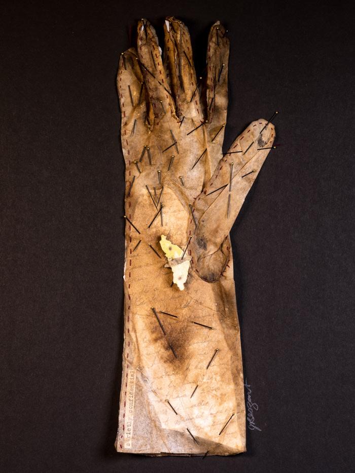 josie-beszant-the-collectors-glove