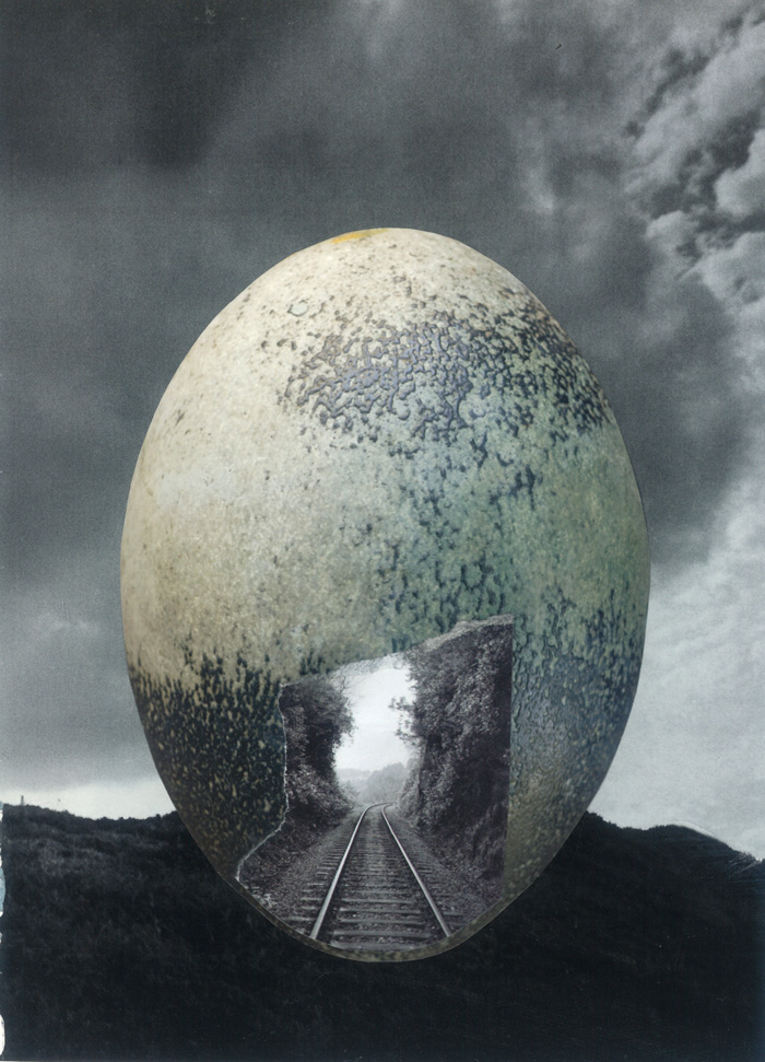 deborah-harris-eggxagerated-potential