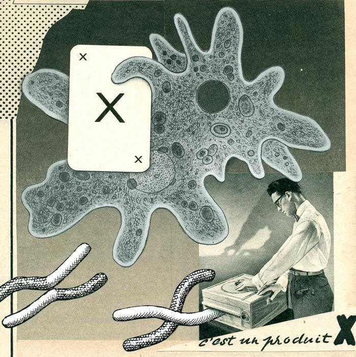 flore-kunst-xerox