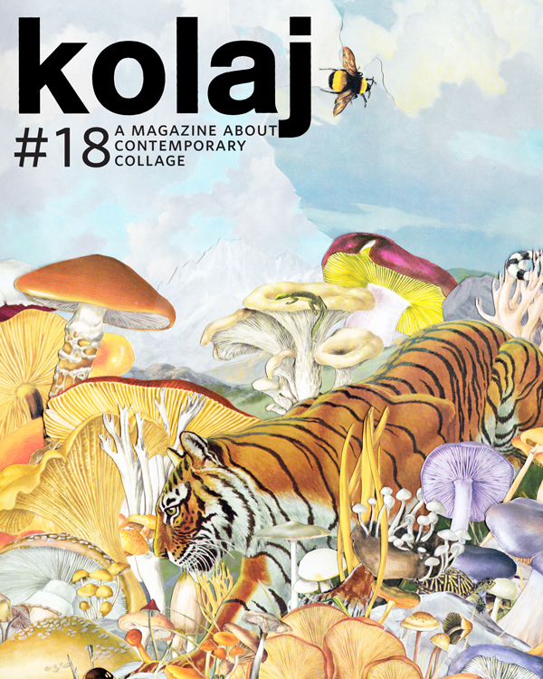 k18-cover