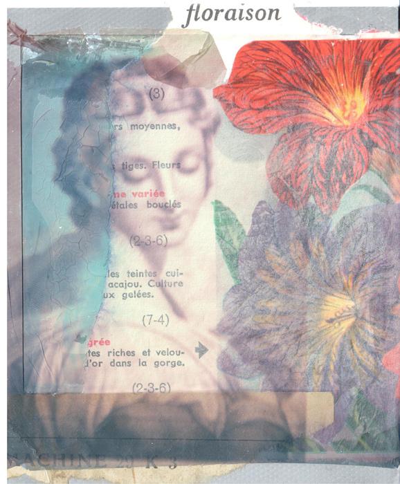 lili-plasticienne-floraison