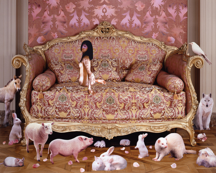 marnie-weber-pink-sofa-issue-8