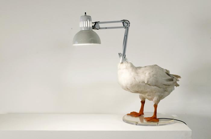 sebastian-errazuriz-the-duck-lamp
